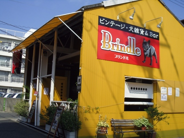 Brindle(ブリンドル)