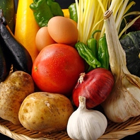 岡山県の自家農園をはじめ、全国から直送の有機野菜!