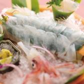 寅八商店 高知本店のおすすめ料理2