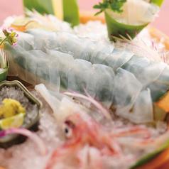 寅八商店 高知本店のおすすめ料理1