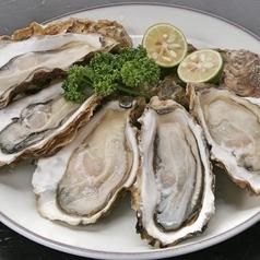 料理メニュー写真【期間限定】三陸産殻付き牡蠣(5個)
