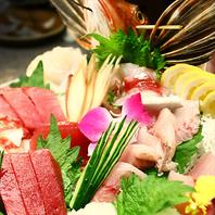 板長が目利きした新鮮魚介を彩り豊かに