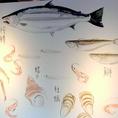 壁には、北海道で獲れる魚介達がたくさん!珍しいお魚や漢字で話題を提供します
