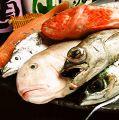 料理メニュー写真朝どり鮮魚