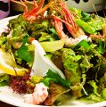 料理メニュー写真三崎の農家直送の新鮮野菜
