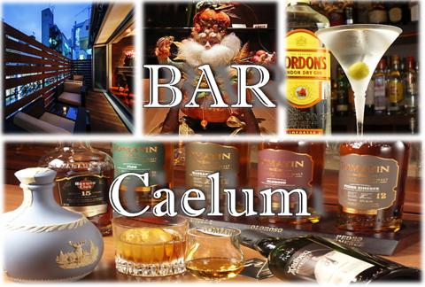つ な caelum バー 時間 bar じょうし 新橋