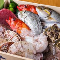 味わい豊かな旬の鮮魚を使用したメニュー有