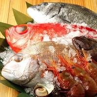 【産地直送の魚】