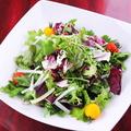料理メニュー写真まずは!クレソン、トレビス、チコリの苦いサラダ