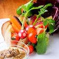 料理メニュー写真鎌倉野菜のバーニャカウダ