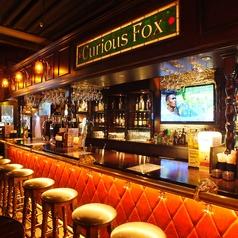 キュリアス フォックス Curious Foxの写真