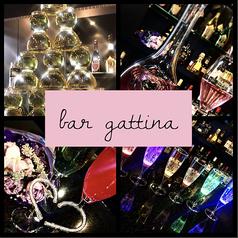 bar gattinaの写真