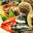 鮮魚料理をしっかりとご提供!! みぜんは美味しい季節野菜、美味しい鮮魚、そして美味しい地酒をご用意しております♪遠州灘・駿河湾・伊豆などで仕入れた鮮魚をその日にご提供するから、お刺身も美味しいんです♪