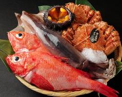 北海道料理 ユック 銀座店の写真