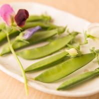 ◆◇畑で採れた新鮮野菜◆◇