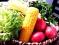 岡山吉備中央町の野菜を農家から直接仕入れしています。吉備中央町は表九120~150mの冷涼な高原地帯。安心と健康を第一に考え有機無農薬農作物を作っています。当店は吉備中央町の野菜の良さを多くの方々に知ってもらおうと、農家の方と協力をして活動しています。