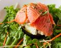 料理メニュー写真サーモンとアボカドサラダ
