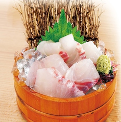 漁港直送 鮮魚の刺身