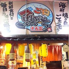 ごちそう居酒屋 魚ぴち 千本丸太町店の特集写真