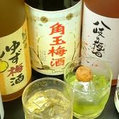 女性に人気のこだわり梅酒も豊富です!さらにノンアルコールカクテルや低アルコールカクテルもご用意♪