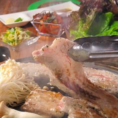 韓国料理 ダルビ