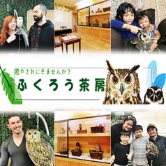 フクロウカフェ ふくろう茶房 新宿店の写真