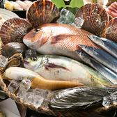 おどる魚のおすすめ料理3
