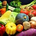 農家さんが一から育てた新鮮野菜を市場を通さず直接仕入れ!だから美味しい!だから安心!