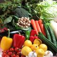 新鮮な野菜たちをふんだんに使用♪単品料理やコース料理でお楽しみいただける八香閣の野菜たちは季節に合わせて旬の物を御用意しております。シャキシャキの食感や季節物ならではの甘味が感じられるよう丁寧に調理しております。