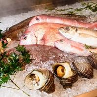 鮮度抜群の旬魚介が常時スタンバイ
