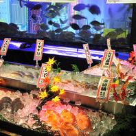 海鮮台より直接、実際の魚を見てご注文できます