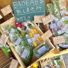 野菜のおいしいレストラン BAOBAB バオバブの雰囲気1