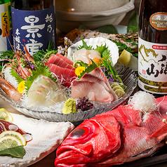 市場直送海鮮居酒屋 みさき 栄店のコース写真
