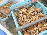 各産地から直送の牡蠣を堪能…♪