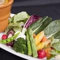 料理メニュー写真白州郷牧場直送JAS認定有機野菜使用 贅沢バーニャカウダ♪