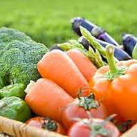 丹波の契約農家から仕入れる新鮮な京野菜♪