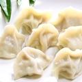料理メニュー写真水餃子(5個入り)