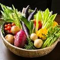 お野菜も地のものを鮮度が高いまま!野が海の野は野菜の野でもあります。当店で扱う主要メニューの野菜は、多くが生産者から直接仕入れております。中間業者を通さないことで、他店よりも美味しい料理をリーズナブルに提供できることに加え、顔が見える生産者の食材を扱いたいという野が海のポリシーの現われでもあります。