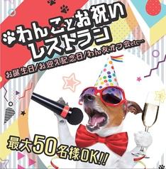 愛犬ヴィレッジ 東新宿店の特集写真