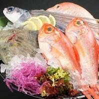 ●新鮮な魚介を市場から毎日仕入れてご用意♪