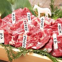 【話題の馬肉専門居酒屋】カラダに嬉しい馬肉の魅力