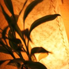 炭火ビストロ 華泉の雰囲気3
