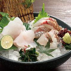 料理メニュー写真【期間限定半額対象】本日の直送鮮魚二種盛り合せ