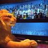 ダンディライオン バー DANDY LION BARのおすすめポイント3