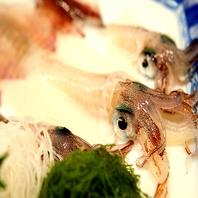 函館市場直送の捕れたて鮮魚寿司