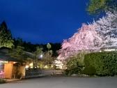 京料理 筍亭の雰囲気3