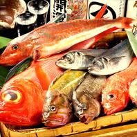 産地直送!当日入荷の鮮魚の数々をご用意しております。