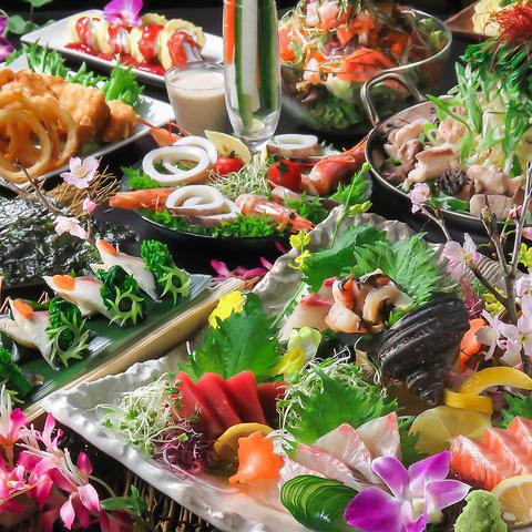 MIXホルモンの野菜たっぷり絶品焼鍋と漁師直送の刺身5種[コース]9品+120分飲放付4500円