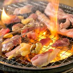 鶏焼き将軍 河内永和の写真