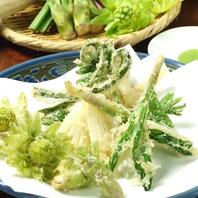 天ぷら盛合せや刺身盛りなど、定番メニューが人気